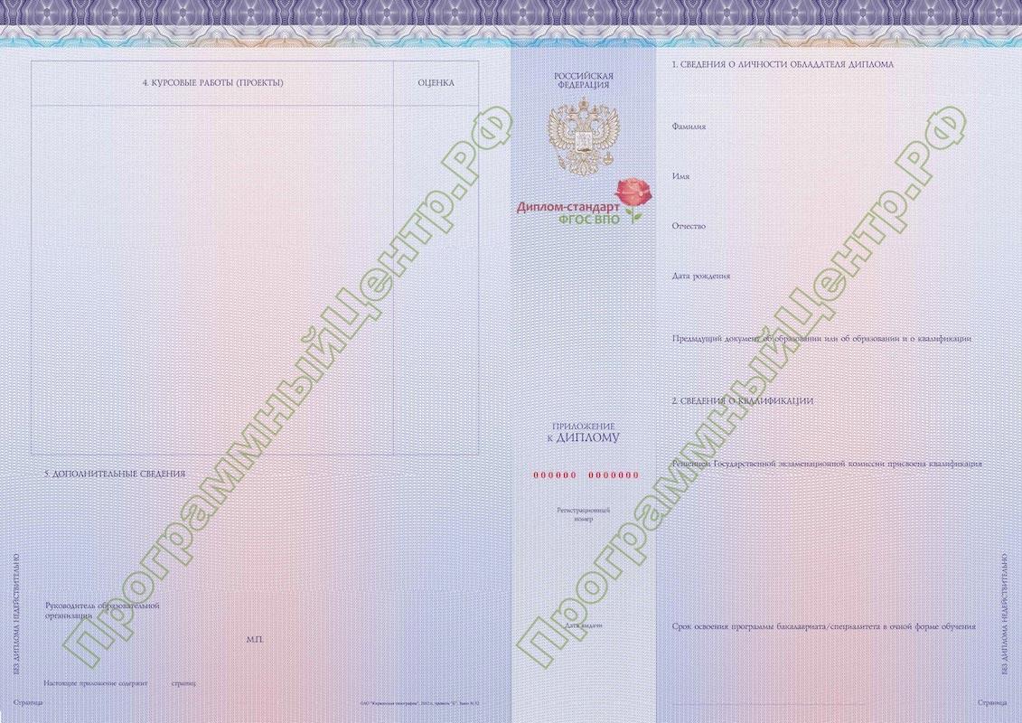 Диплом стандарт ФГОС ВПО Приложение к диплому