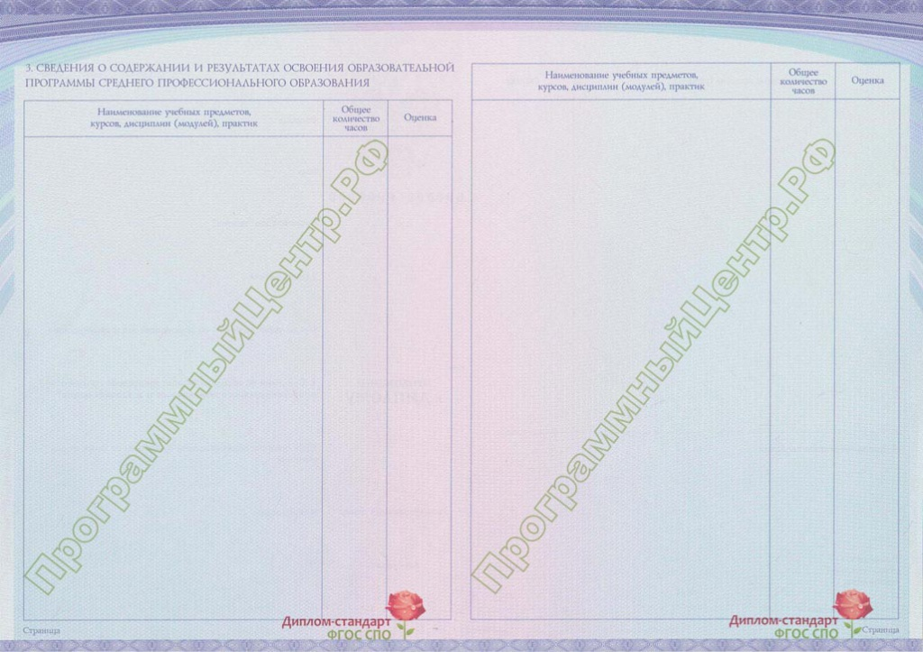 Диплом стандарт ФГОС СПО 4n m jpg